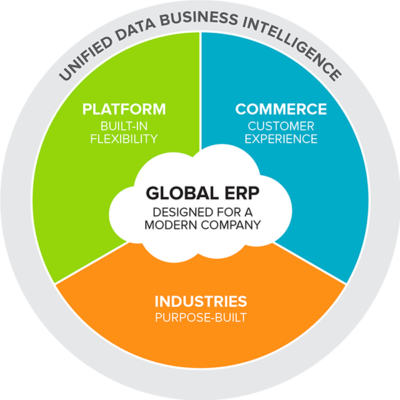 NetSuite Global ERP, business intelligence