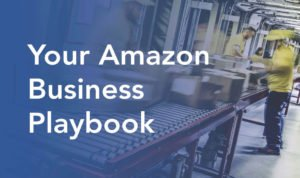 NetSuite, Amazon, Amazon playbook, Terillium