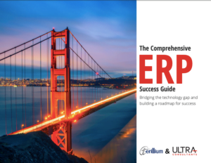 ERP solutions success guide